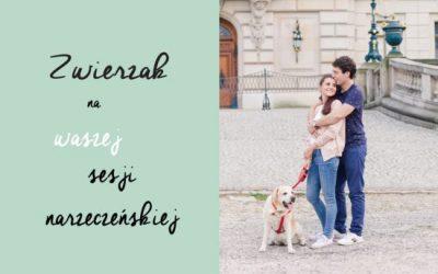 Pies nasesji narzeczeńskiej | ŚLUBNA ŚRODA